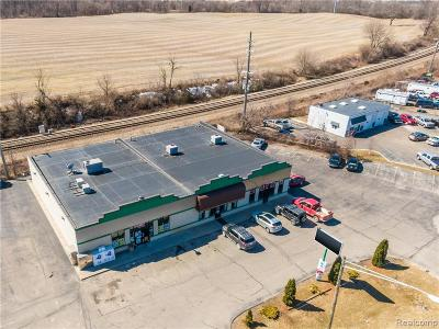 Commercial For Sale: 1280 Imlay City Road