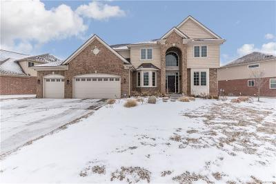 NOVI Single Family Home For Sale: 27647 Estrada Ln