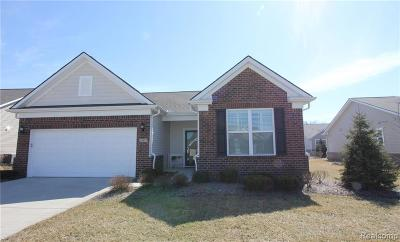 Brownstown, Brownstown Twp Single Family Home For Sale: 23877 Montague Drive
