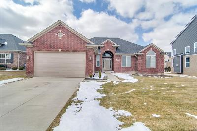 Macomb Twp Single Family Home For Sale: 55175 Azinger Drive
