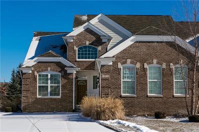 NORTHVILLE Condo/Townhouse For Sale: 48876 Rainbow Lane N