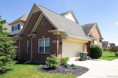 Canton, Canton Twp Condo/Townhouse For Sale: 48553 Eastbridge Drive