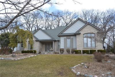 Commerce, Commerce Township, Commerce Twp Single Family Home For Sale: 5364 Bridge Trail E
