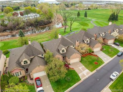Allen Park, Lincoln Park, Southgate, Wyandotte, Taylor, Riverview, Brownstown Twp, Trenton, Woodhaven, Rockwood, Flat Rock, Grosse Ile Twp, Dearborn, Gibraltar Condo/Townhouse For Sale: 9 Turnberry Lane