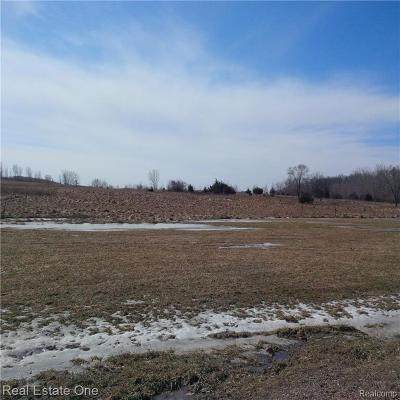 Rochester, Rochester Hills Residential Lots & Land For Sale: S School