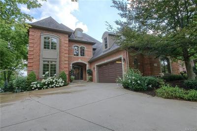 Commerce Twp Single Family Home For Sale: 739 Elderberry Court