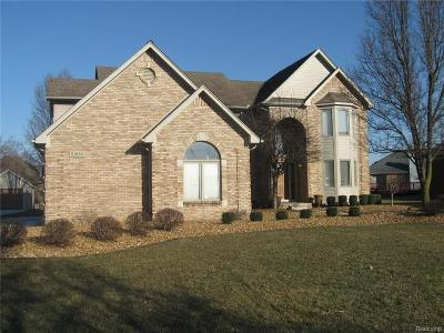 Chesterfield Twp Single Family Home For Sale: 51930 Baker Road