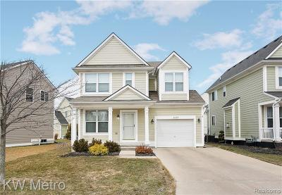 Chesterfield Twp Single Family Home For Sale: 30459 Caroline Emily