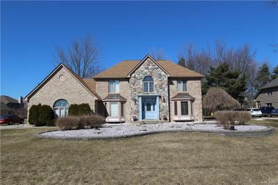 Sterling Heights MI Single Family Home For Sale: $449,900