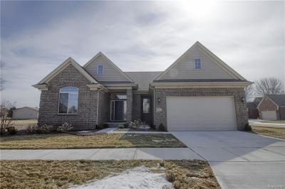 Chesterfield Twp Single Family Home For Sale: 49528 Ishpeming Drive