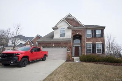 NORTHVILLE Single Family Home For Sale: 16406 Ridgewood Court