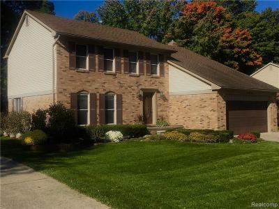Novi Single Family Home For Sale: 22081 Shadybrook Drive