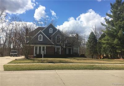 Novi Single Family Home For Sale: 21129 Chase Drive Drive