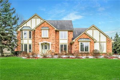 Troy Single Family Home For Sale: 4489 Birch Run Drive