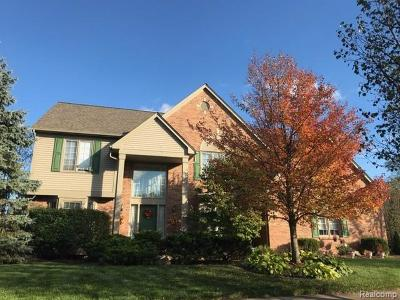 Canton, Canton Twp Single Family Home For Sale: 47955 Pavillon Road