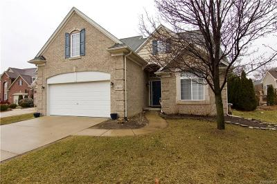 Livonia Single Family Home For Sale: 11813 Hunters Park Court