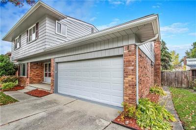 Southfield Single Family Home For Sale: 17320 Madison Street
