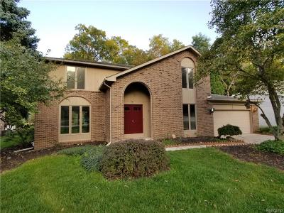 Rochester Hills Single Family Home For Sale: 804 Medinah Drive