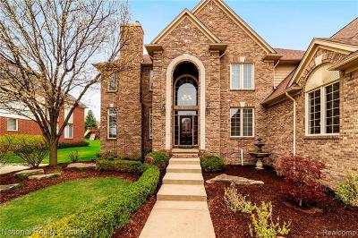 Rochester, Rochester Hills Single Family Home For Sale: 702 Panorama