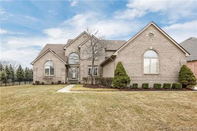 Washington Twp Single Family Home For Sale: 13532 Scenic Hollow Drive