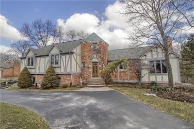 Oakland Twp Single Family Home For Sale: 3175 Serenity Road