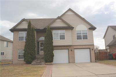Chesterfield Twp Single Family Home For Sale: 52090 Hickory Drive