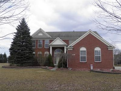 Canton, Canton Twp Single Family Home For Sale: 407 Springfield