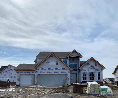 Lyon Twp MI Single Family Home For Sale: $402,465