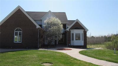 Single Family Home For Sale: 7476 Tara