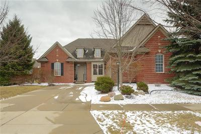 Novi Single Family Home For Sale: 41520 Thoreau Ridge
