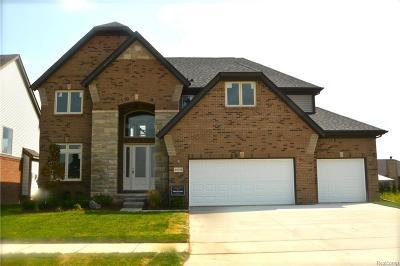 MACOMB Single Family Home For Sale: 49857 Split Rock Road