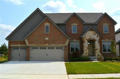 MACOMB Single Family Home For Sale: 49776 Split Rock Road
