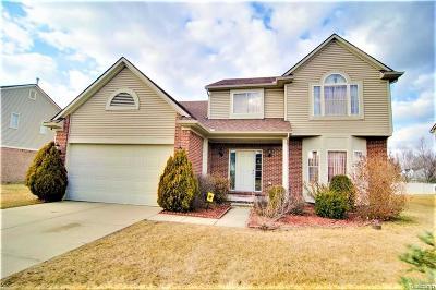 Van Buren Twp Single Family Home For Sale: 45180 Brookview Drive