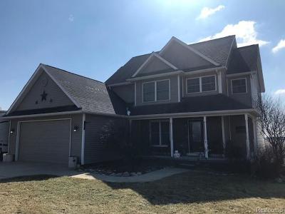 Imlay Twp MI Single Family Home For Sale: $299,900