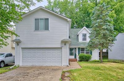 Waterford Single Family Home For Sale: 3832 Mapleleaf Road