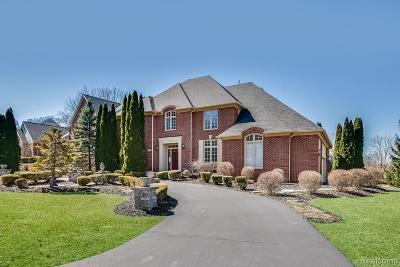 West Bloomfield Twp Single Family Home For Sale: 3412 Hidden Oaks Lane