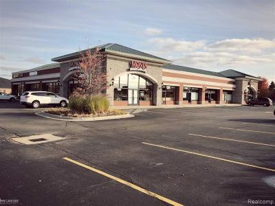 Macomb Twp Commercial For Sale: 16636 24 Mile Road