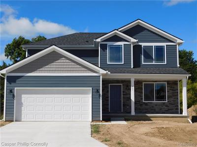 Rochester Hills Single Family Home For Sale: 009 Cone Avenue