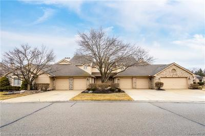 Northville Condo/Townhouse For Sale: 18168 Blue Heron Pointe Dr