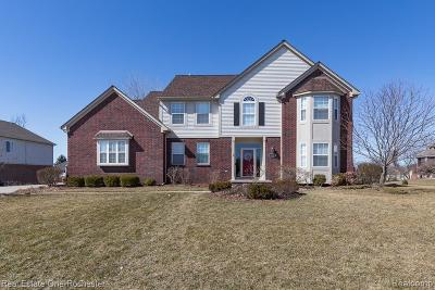 Oakland Twp Single Family Home For Sale: 4122 Norwich Court