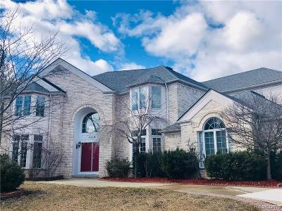 Troy Single Family Home For Sale: 458 Belle Meade Road