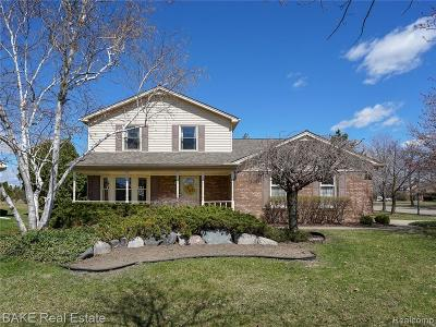Livonia Single Family Home For Sale: 38252 Mallory Drive