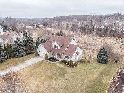 Brandon Twp Single Family Home For Sale: 154 Lakeshore Dr