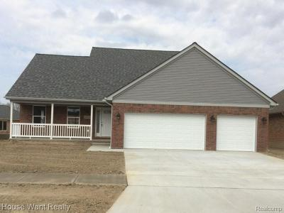 St Clair Shores, Roseville, Harrison Twp, Fraser Single Family Home For Sale: 33426 Royal Park W