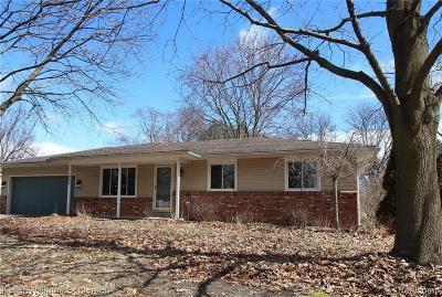 Commerce Twp Single Family Home For Sale: 5376 Barkley Street