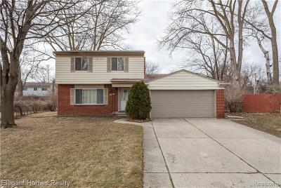 Southfield Single Family Home For Sale: 29615 Guy Street