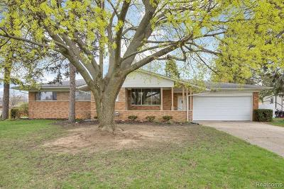 Shelby Twp Single Family Home For Sale: 53342 Franklin Drive