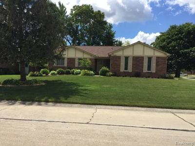 Rochester Hills, Rochester Single Family Home For Sale: 2125 Warrington Road