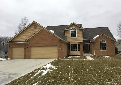 Oakland County Single Family Home For Sale: 6481 Teluride Drive
