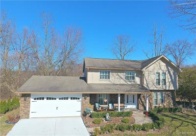 West Bloomfield Twp Single Family Home For Sale: 6462 Odessa Court